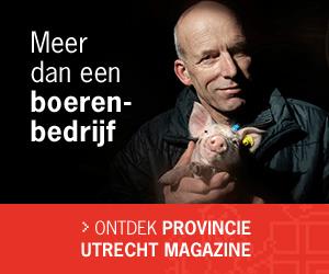 provincie-utrecht-magazine-03-by-dutchgiraffe