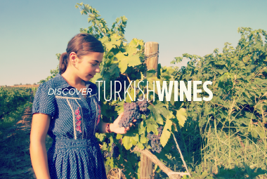 thumb2-discover-turkish-wines-380x255